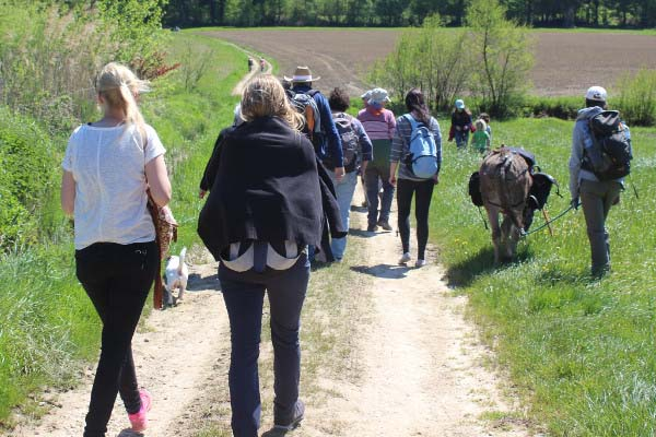 Eselwanderung Schwarzwald