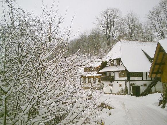 Ferienwohnung im schwarzwald f r 4 personen in freiamt for Ferienwohnung im schwarzwald
